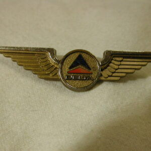 1960's Delta Airlines Wings Stoffel Seals Tukahoe NY Gold Plastic Wings Pin