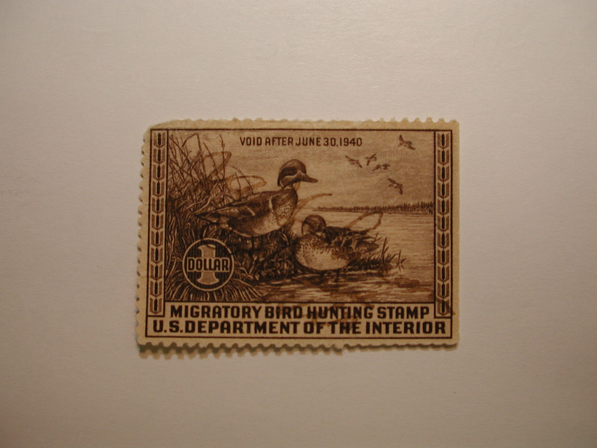 US Department of Interior Scott #RW6 $1 Green-winged Teal Ducks Stamp 1939, Used Missing Small Upper Left Corner