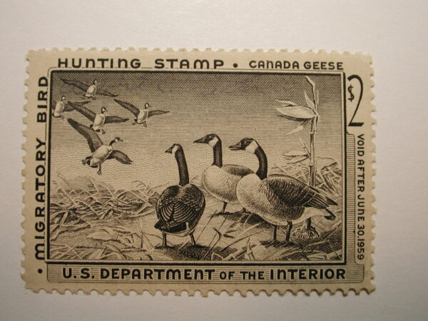 US Department of Interior Scott #RW25 $2 Canada Geese Stamp 1958, LH/Used