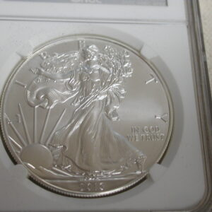 2013 Silver Eagle $1 MS70 NGC