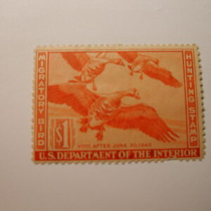 U.S. Stamp Scott #RW11 US Department of Agriculture $1 Migratory Bird Hunting Stamp No Gum Pulled Perfs Lower Rt