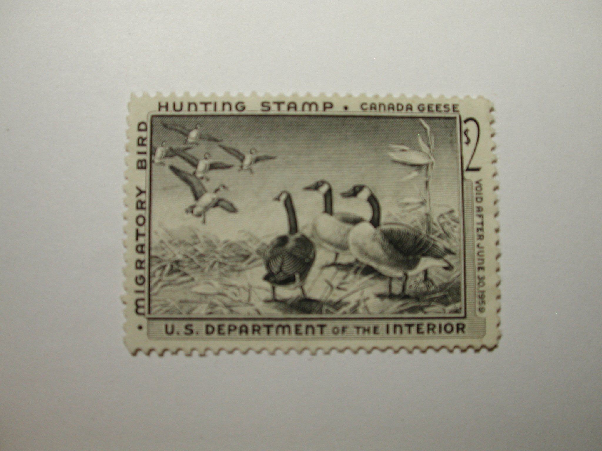 U.S. Stamp Scott #RW25 US Department of Agriculture $2 Migratory Bird Hunting Stamp - Canada Geese, No Gum