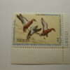 US Department of Interior Scott #RW38 $3 Cinnamon Teal 1971, MNH Plate Single #171587