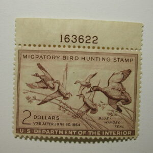 US Department of Interior Scott #RW20 $2 Blue-Winged Teal 1953, MNH/ gum skips on Tabe small thin on stamp - Plate Single #163622