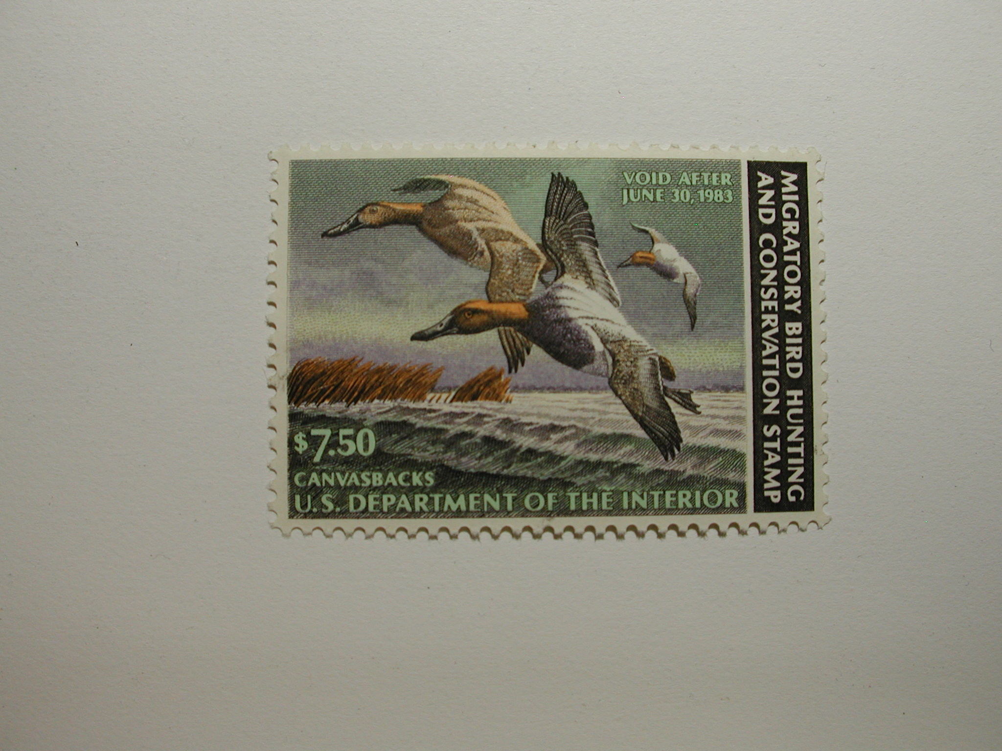 US Department of Interior Scott #RW42 $7.50 Canvasback Ducks 1982, MNH