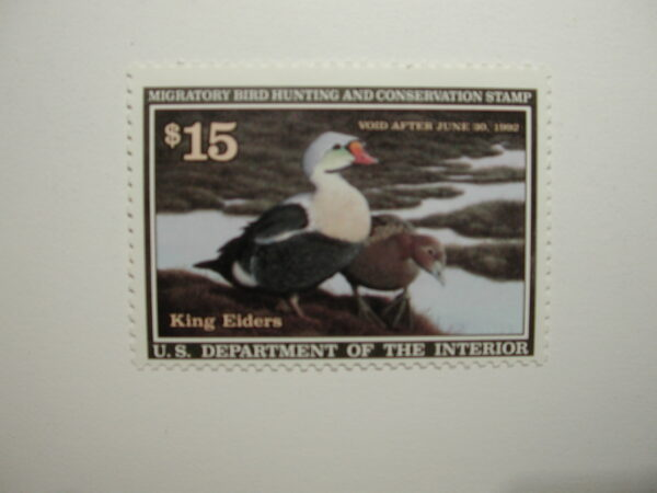 US Department of Interior Scott #RW58 $15 King Eiders Duck Stamp 1991, MNH