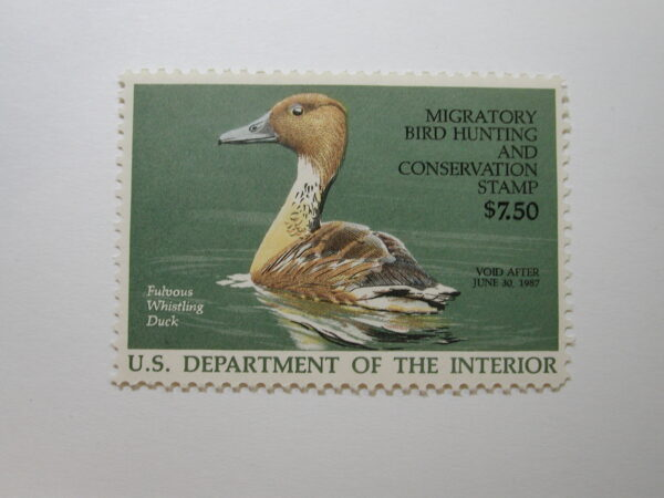 US Department of Interior Scott #RW53 $7.50 Fulvous Whistling Duck Stamp 1986, MNH
