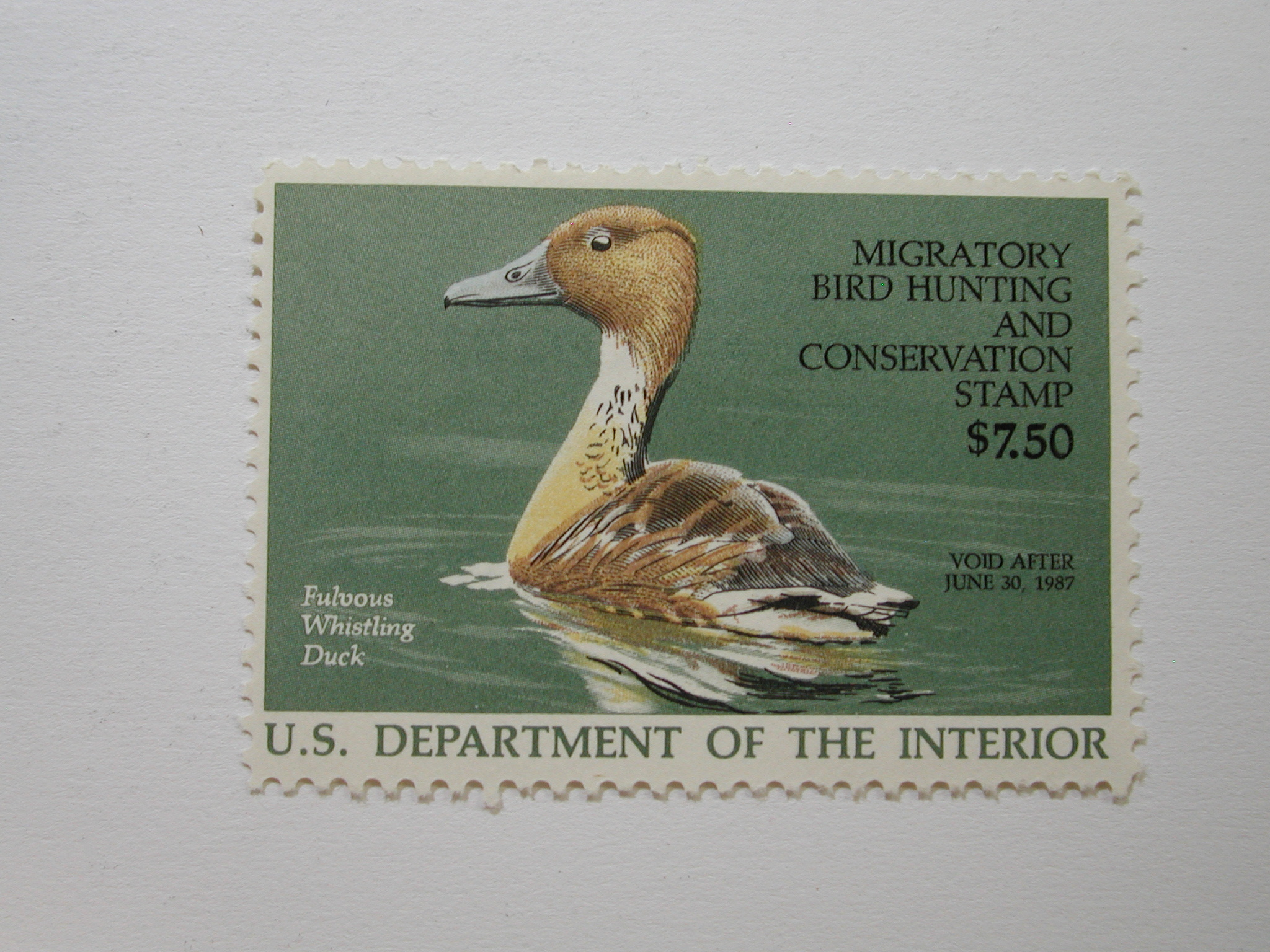US Department of Interior Scott #RW53* $7.50 Fulvous Whistling Duck Stamp 1986, MNH