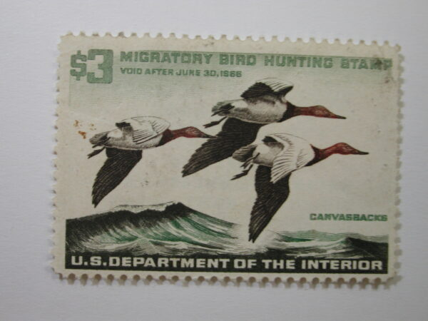 US Department of Interior Scott #RW32** $3 Canvas Backs Duck Stamp 1965, MNH