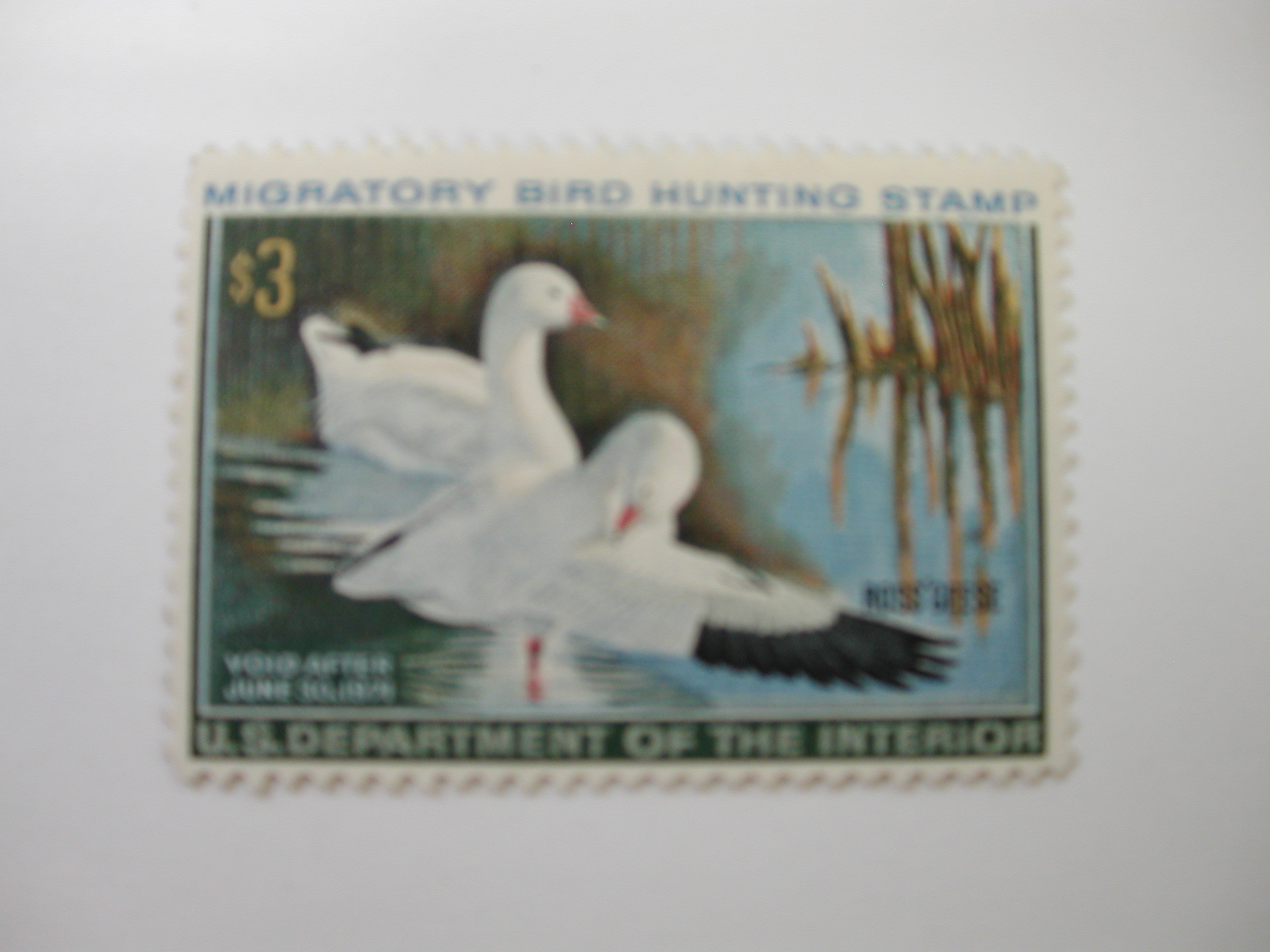 US Department of Interior Scott #RW37 $3 Ross' Geese Stamp 1970, MNH