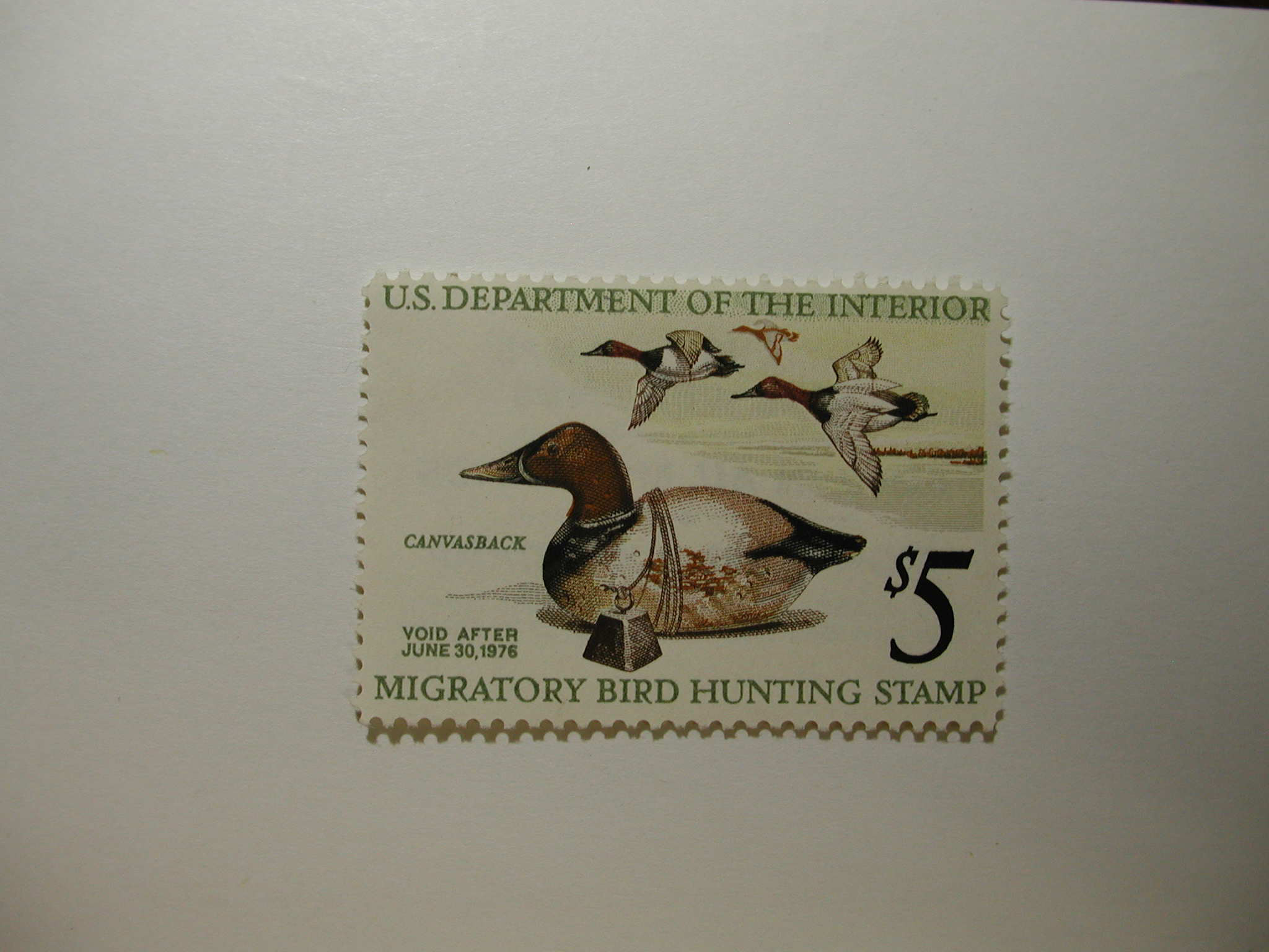 US Department of Interior Scott #RW42 $5 Canvasback Duck Stamp 1975, MNH