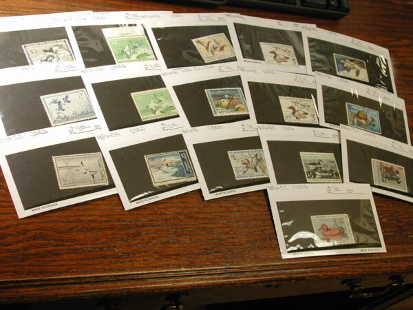 U.S. Duck Stamps 14 Different Stamps, Used, Nice and Clean